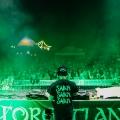 forestland_8