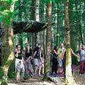 forestation_10