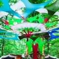 forestation_14