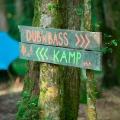 forestation_1