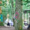 forestation_38
